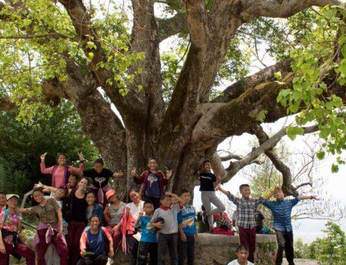 Viaje solidario a Nepal: voluntariado educativo en Katmandú
