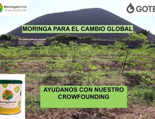Lanzamos el crowfounding «Moringa para el cambio global»