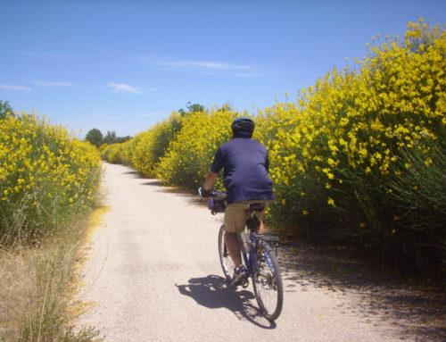 Bicicletos Viajes: a la Vía Verde del Zafán