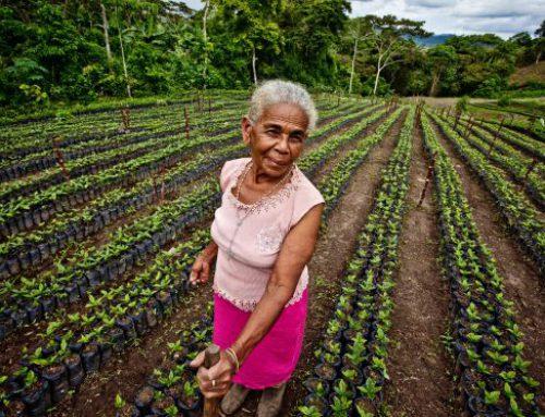 ¡Ponle cara a un café cultivado por mujeres dueñas de sus vidas!