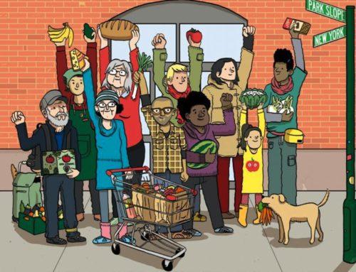 Artículos sobre moda sostenible y supermercados cooperativos