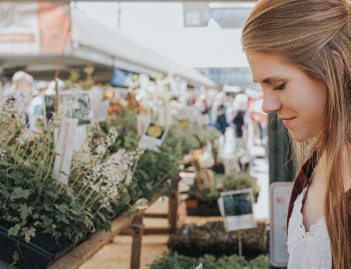 ¡Lee un nuevo artículo sobre marketing en el blog de Noez!